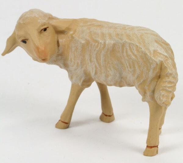 Gelderland Krippe - Schaf umschauend