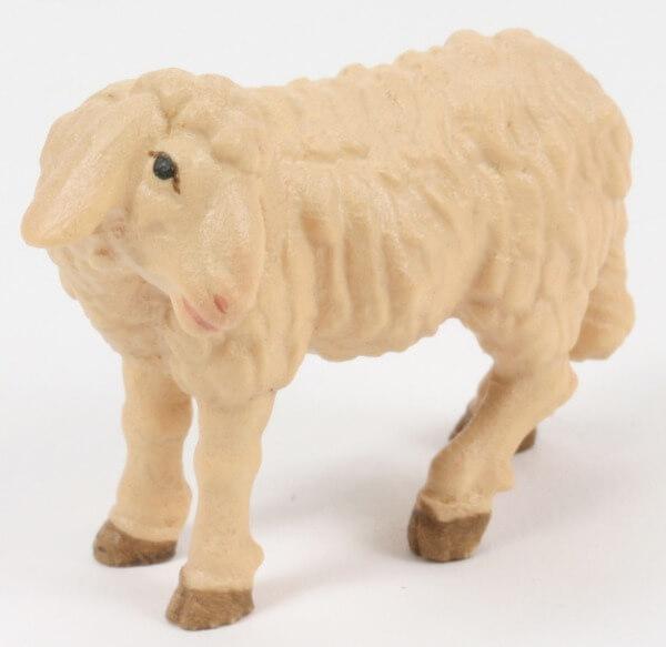 Raffaello-Krippe - Schaf stehend