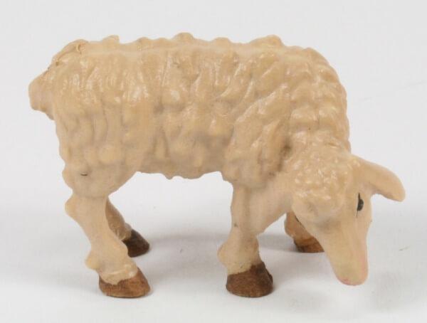 Raffaello-Krippe - Schaf essend