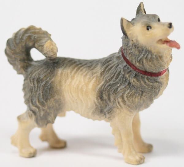 Kostner-Krippe - Hund Spitz