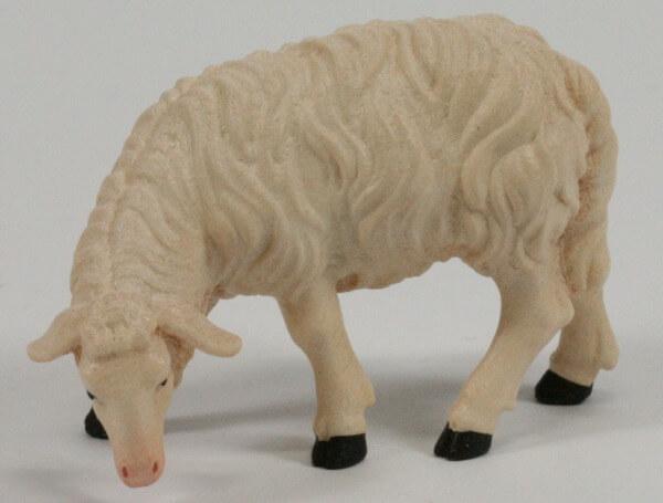 Kostner-Krippe - Schaf äsend linksschauend