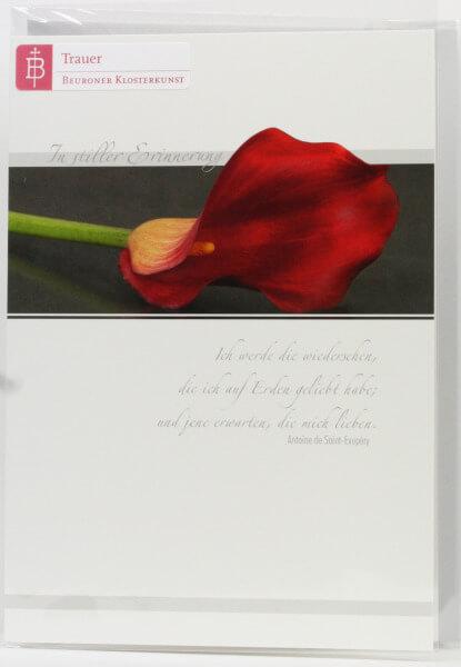 Trauerkarte - Trost für Dich