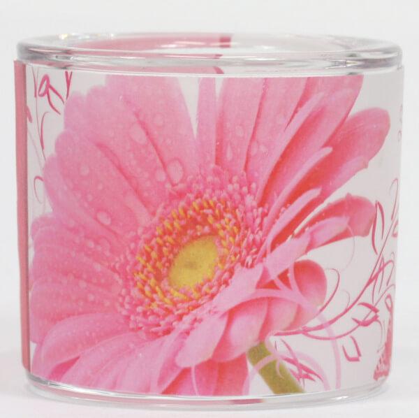 Glaswindlicht - Namenstag & Blüte