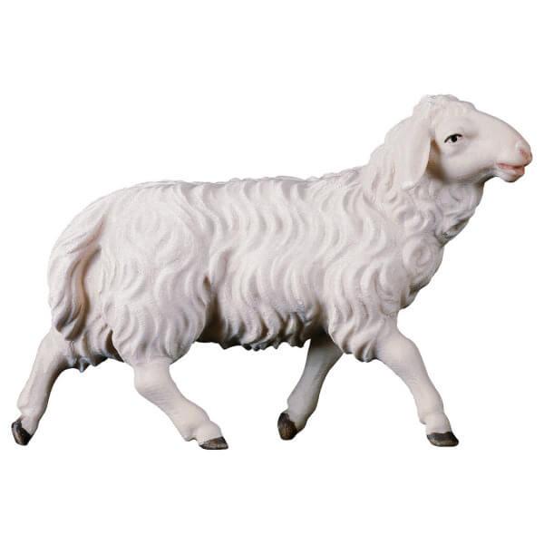 Hirten Krippe - Schaf laufend