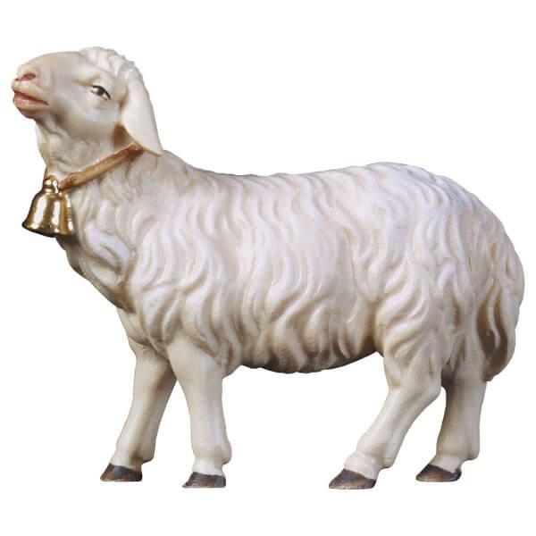 Hirten Krippe - Schaf geradeaus schauend mit Glocke