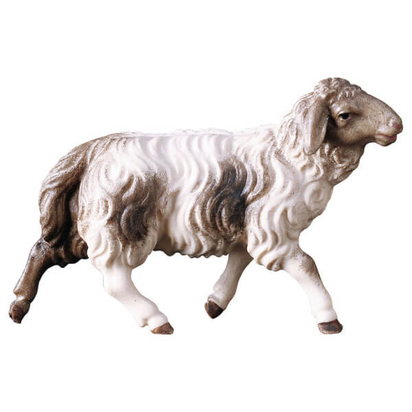Hirten Krippe - Schaf laufend fleckig