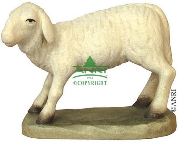 Karl-Kuolt-Krippe - Schaf gebückt stehend
