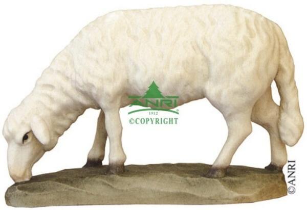 Karl-Kuolt-Krippe - Schaf äsend
