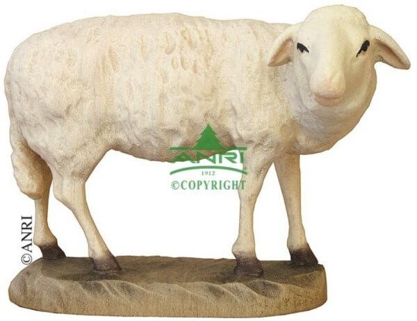 Karl-Kuolt-Krippe - Schaf stehend und äsend
