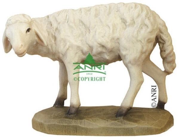 Karl-Kuolt-Krippe - Schaf stehend links schauend