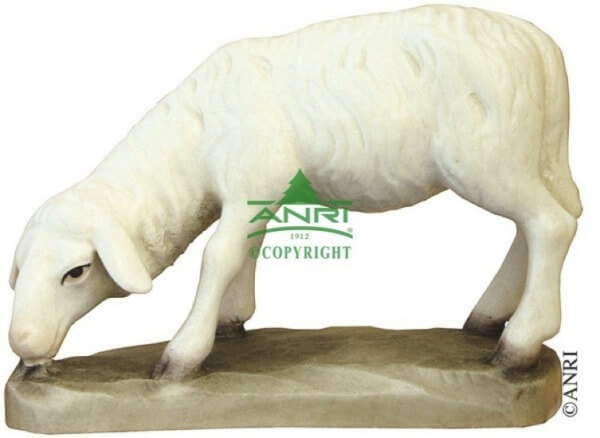 Karl-Kuolt-Krippe - Schaf äsend groß