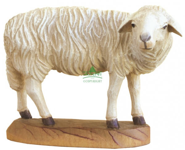 Karl-Kuolt-Krippe Lindenholz - Schaf stehend