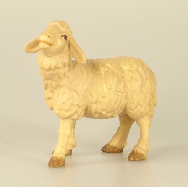Raffaello-Krippe - Schaf stehend u. Blökend