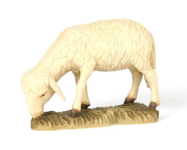 Bacher-Krippe - Schaf äsend