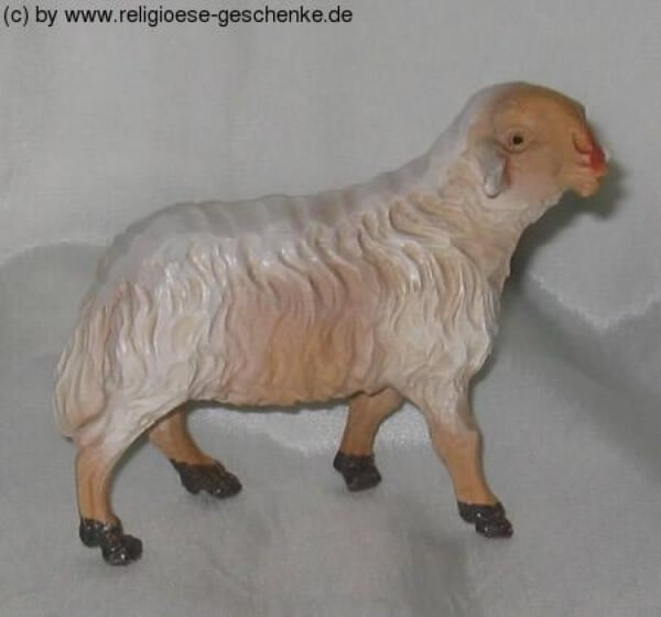 Carolus-Krippe - Schaf stehend rechts