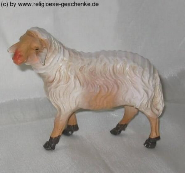Carolus-Krippe - Schaf stehend links