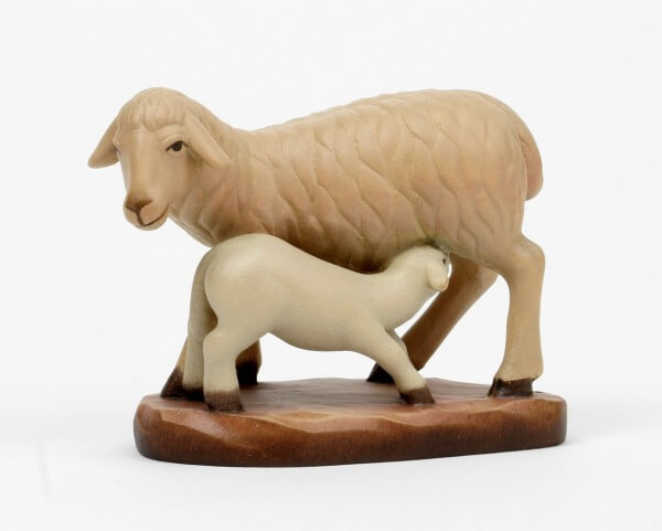 Heilig-Land Krippe - Schaf mit Lamm trinkend