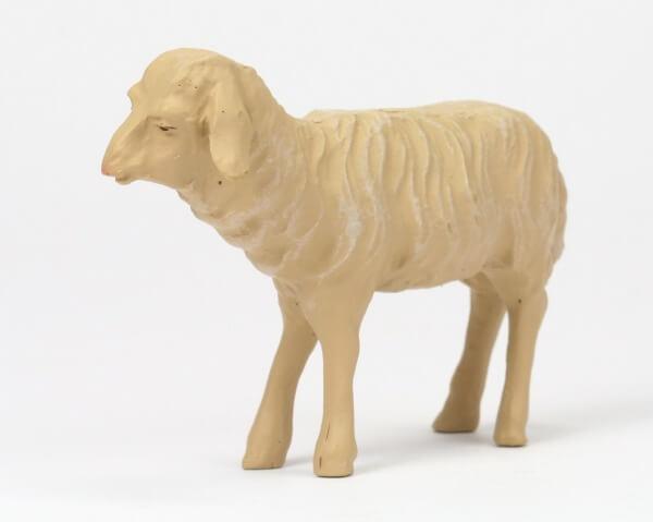 Gelderland Krippe - Schaf schauend