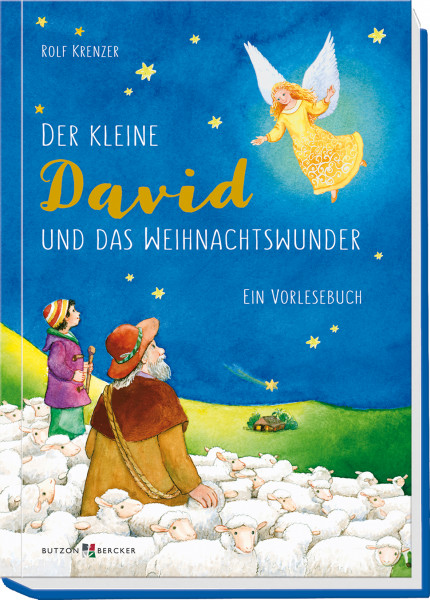 Kinderbuch - Der kleine David und das Weihnachtswunder
