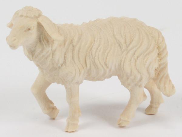 Kostner-Krippe - Schaf stehend Kopf hoch