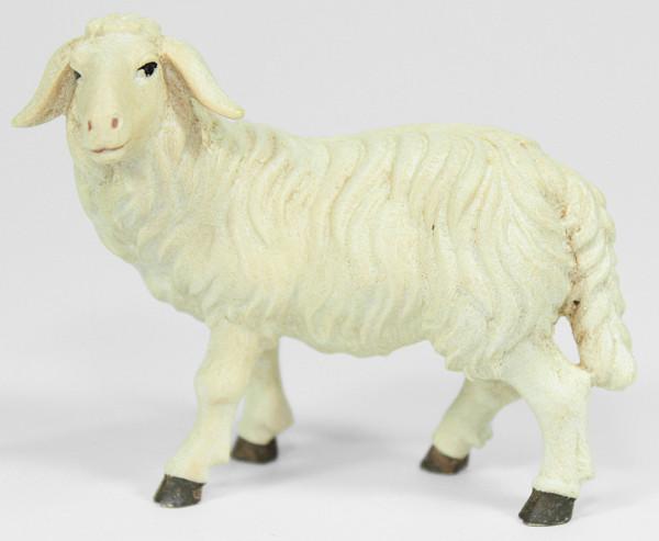 Kostner-Krippe - Schaf stehend linksschauend