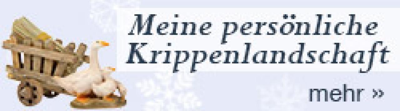 persoenliche-krippenlandschaft-250x70-1